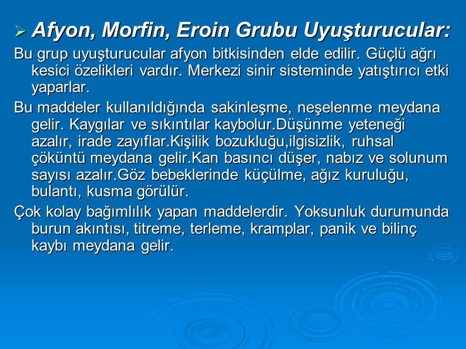  Afyon, Morfin, Eroin Grubu Uyuşturucular: Bu grup uyuşturucular afyon bitkisinden elde edilir. Güçlü ağrı kesici özelikleri vardır. Merkezi sinir si