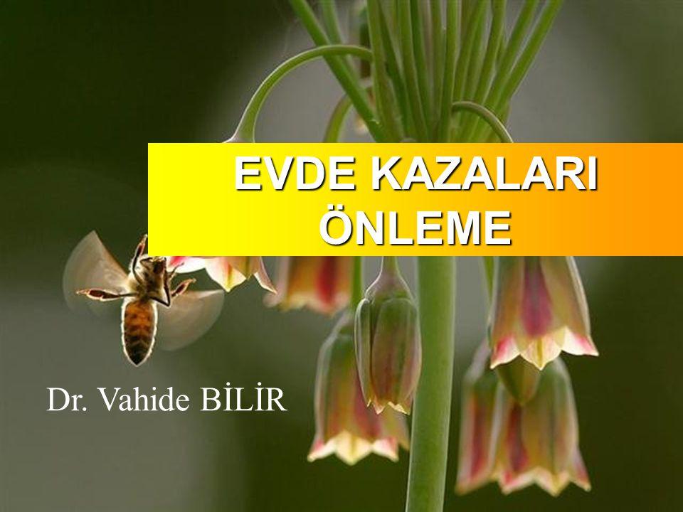 EVDE KAZALARI ÖNLEME Dr. Vahide BİLİR