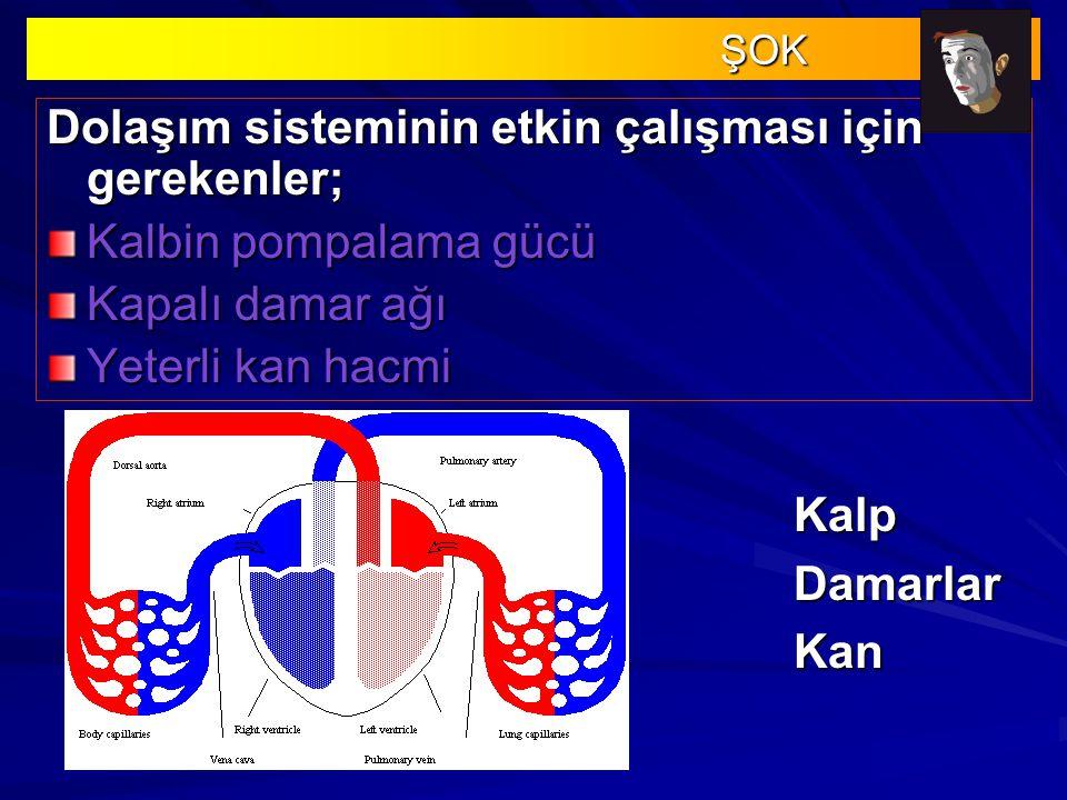 Dolaşım sisteminin etkin çalışması için gerekenler; Kalbin pompalama gücü Kapalı damar ağı Yeterli kan hacmi ŞOK ŞOK KalpDamarlarKan