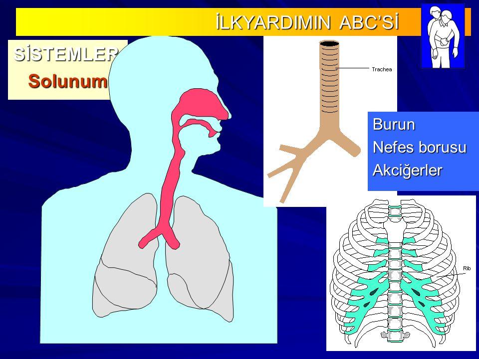 SİSTEMLERSolunum Burun Nefes borusu Akciğerler İLKYARDIMIN ABC'Sİ İLKYARDIMIN ABC'Sİ