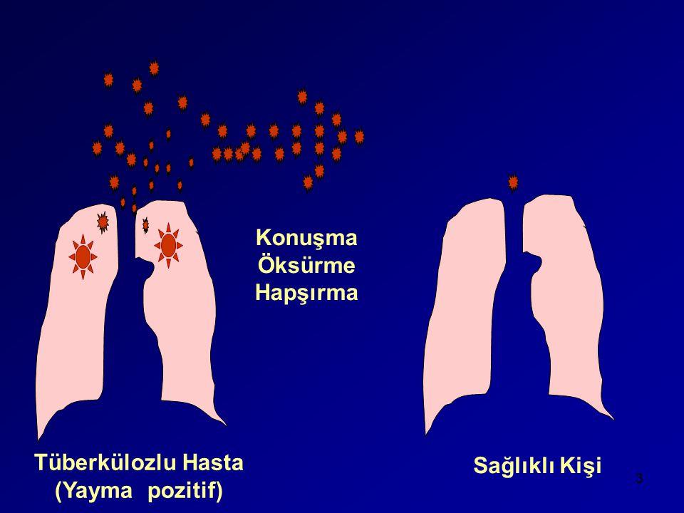 Tüberkülozlu Hasta (Yayma pozitif) Sağlıklı Kişi Konuşma Öksürme Hapşırma 3