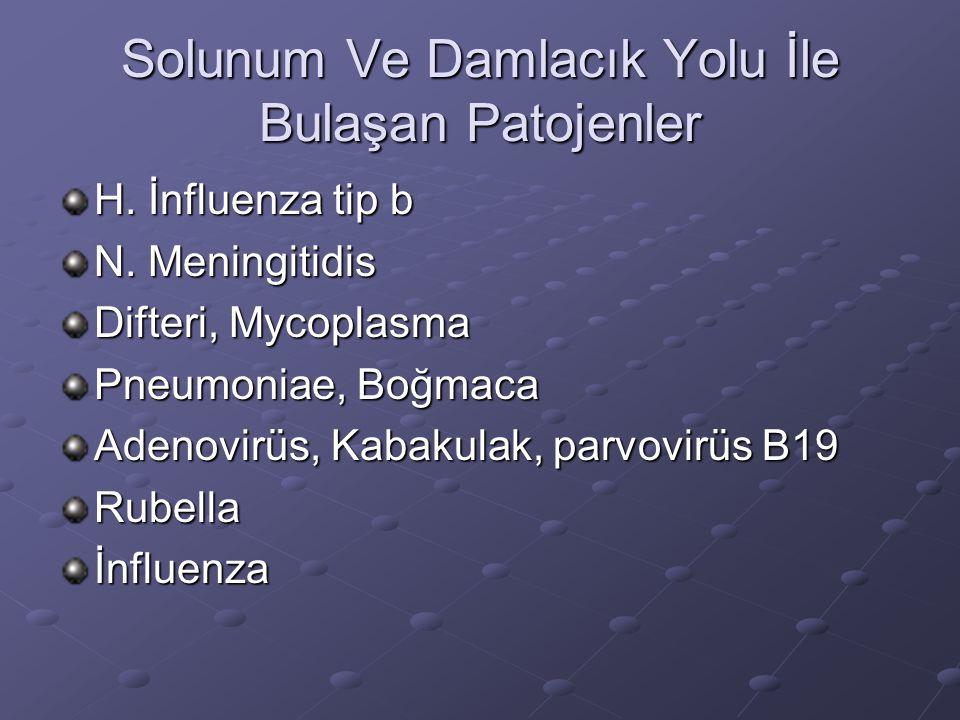 Solunum Ve Damlacık Yolu İle Bulaşan Patojenler H. İnfluenza tip b N. Meningitidis Difteri, Mycoplasma Pneumoniae, Boğmaca Adenovirüs, Kabakulak, parv