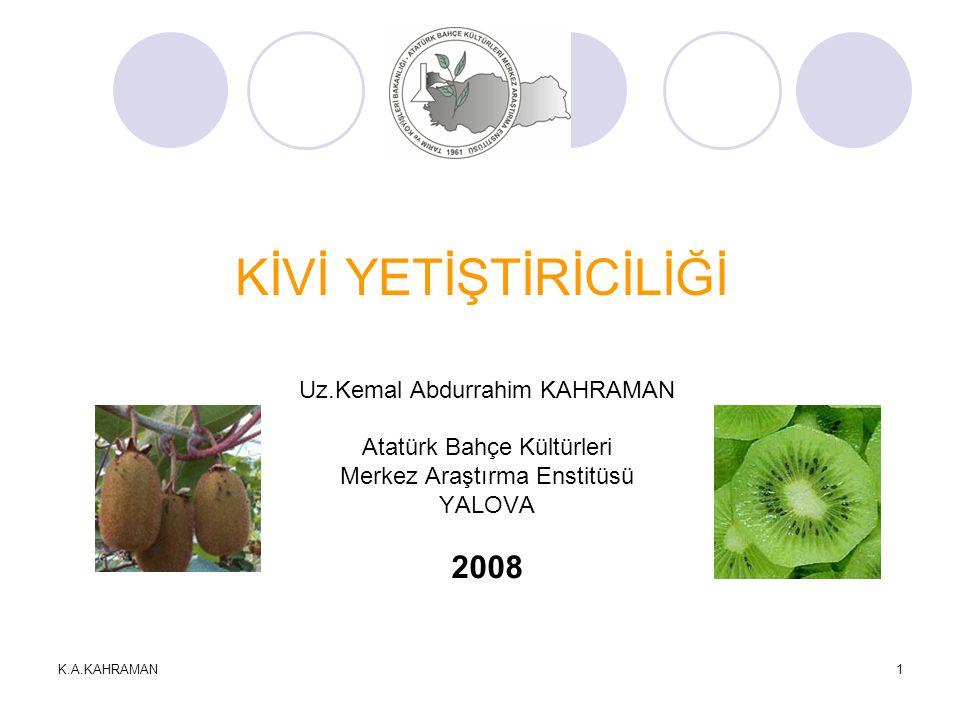 K.A.KAHRAMAN2 KİVİ TÜRLERİ (Actinidia spp.) 1.A.rufa 5.A.latifolia 9.A.arguta 13.A.guilinensis 2.A.melanandra 6.A.indochinensis 10.A.fulvicoma 14.A.setosa 3.A.glaucophylla 7.A.chinensis(Hort16A) 11.A.deliciosa(Hayward) 15.A.chrysantha 4.A.chinensis 8.A.macrosperma 12.A.arguta var.purpurea 16.A.eriantha Alem: Plantae Bölüm: Magnoliophyta Sınıf: Magnoliopsida Takım: Ericales Familya: Actinidiaceae Cins: Actinidia
