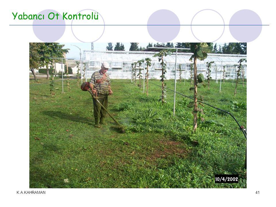 K.A.KAHRAMAN41 Yabancı Ot Kontrolü