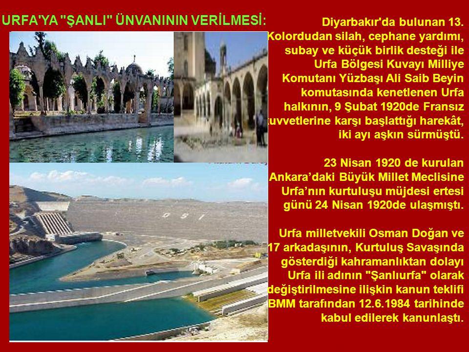 Diyarbakır da bulunan 13.