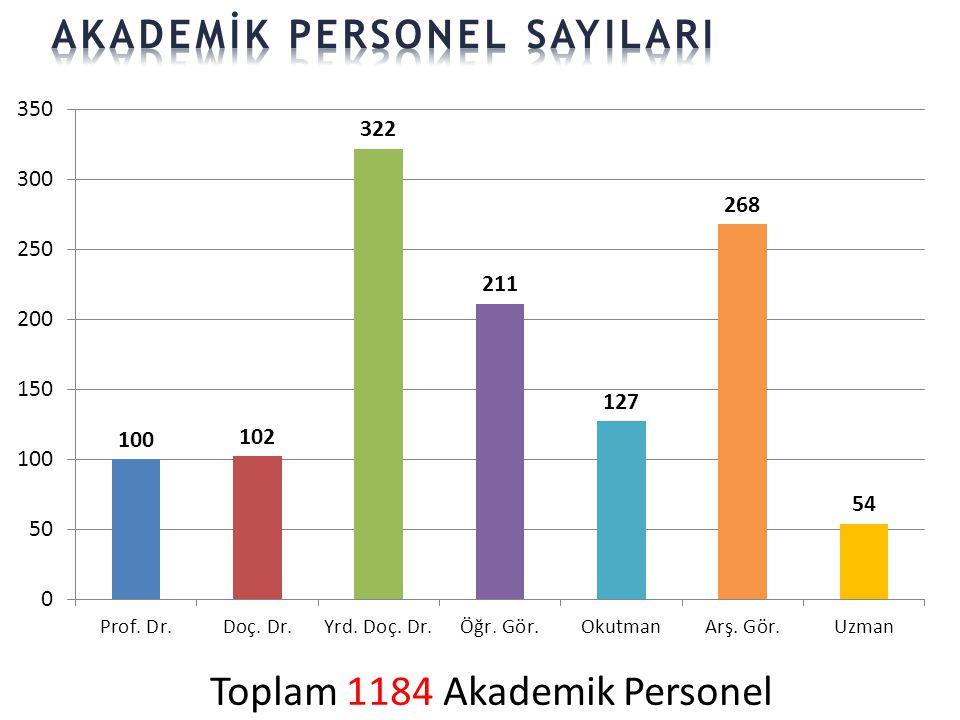 Toplam 1184 Akademik Personel