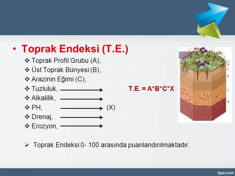 •Toprak Endeksi (T.E.)  Toprak Profil Grubu (A),  Üst Toprak Bünyesi (B),  Arazinin Eğimi (C),  Tuzluluk, T.E. = A*B*C*X  Alkalilik,  PH,(X)  D