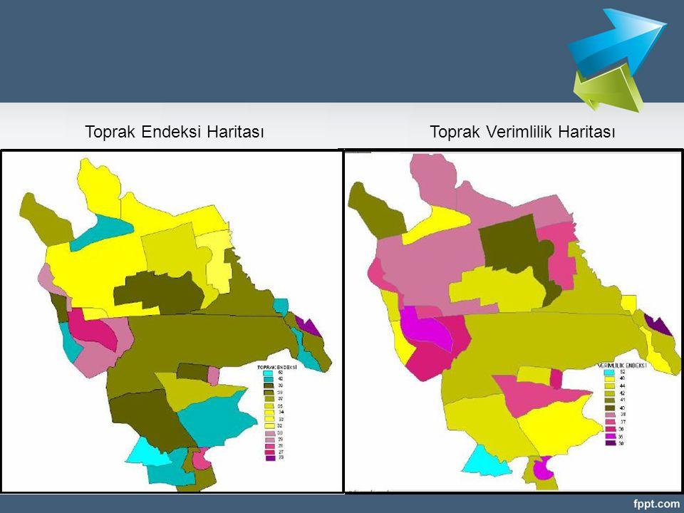 Toprak Endeksi HaritasıToprak Verimlilik Haritası