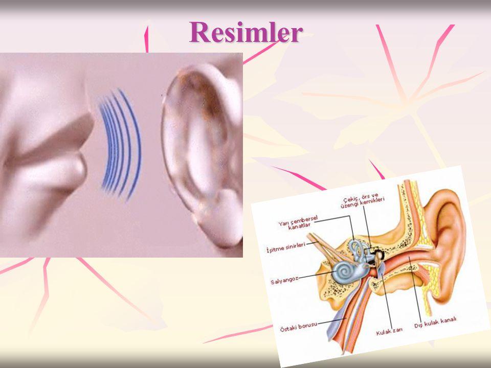 ..Ses..(4)  Cisimlerin titreşmesi ile meydana gelen sesin kulağımıza kadar gelebilmesi için ses kaynağı ile kulağımız arasında katı – sıvı – gaz gibi
