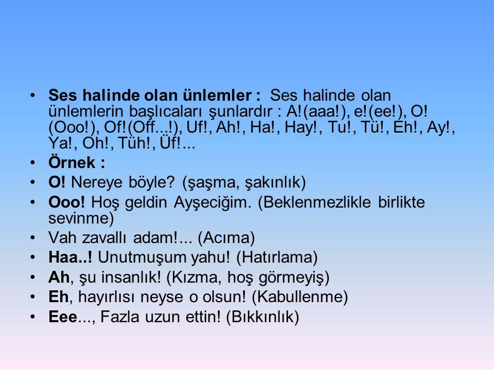 •Ses halinde olan ünlemler : Ses halinde olan ünlemlerin başlıcaları şunlardır : A!(aaa!), e!(ee!), O! (Ooo!), Of!(Off...!), Uf!, Ah!, Ha!, Hay!, Tu!,