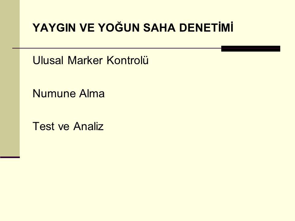 DENETİM KAPSAMINDA YAPILACAK İŞLER 4.