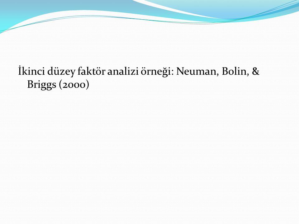 İkinci düzey faktör analizi örneği: Neuman, Bolin, & Briggs (2000)