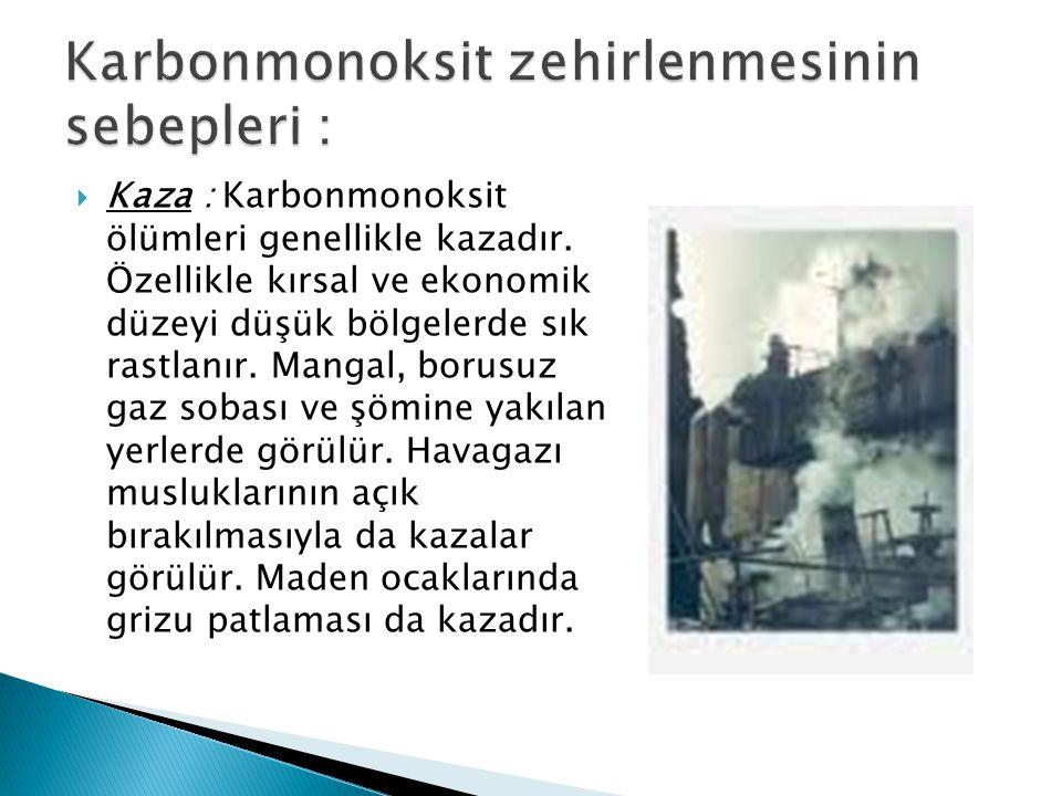  Kaza : Karbonmonoksit ölümleri genellikle kazadır. Özellikle kırsal ve ekonomik düzeyi düşük bölgelerde sık rastlanır. Mangal, borusuz gaz sobası ve