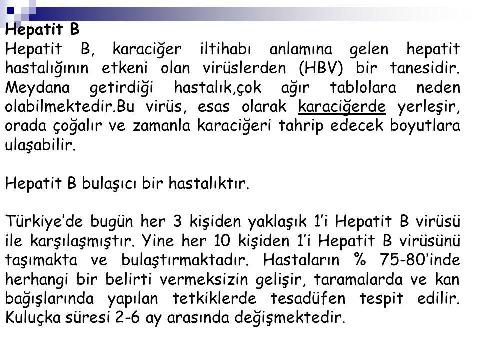 Hepatit B Hepatit B, karaciğer iltihabı anlamına gelen hepatit hastalığının etkeni olan virüslerden (HBV) bir tanesidir. Meydana getirdiği hastalık,ço