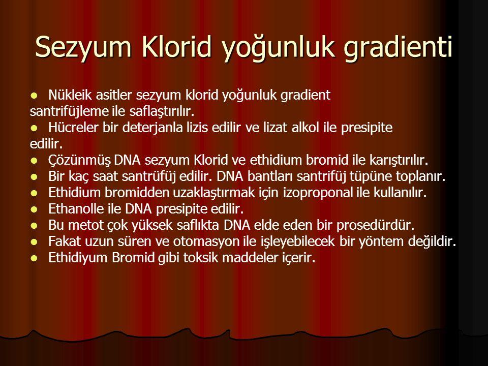Sezyum Klorid yoğunluk gradienti   Nükleik asitler sezyum klorid yoğunluk gradient santrifüjleme ile saflaştırılır.   Hücreler bir deterjanla lizi
