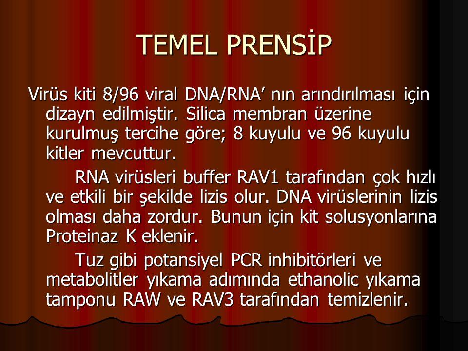 TEMEL PRENSİP Virüs kiti 8/96 viral DNA/RNA' nın arındırılması için dizayn edilmiştir. Silica membran üzerine kurulmuş tercihe göre; 8 kuyulu ve 96 ku