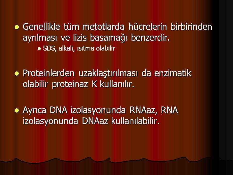 DNA saflaştırılması  Tuzla çöktürme olabilir  Ethanol yada izopropanol  Organik ekstraksiyon  DNA / RNA katı yüzeye bağlanabilir.