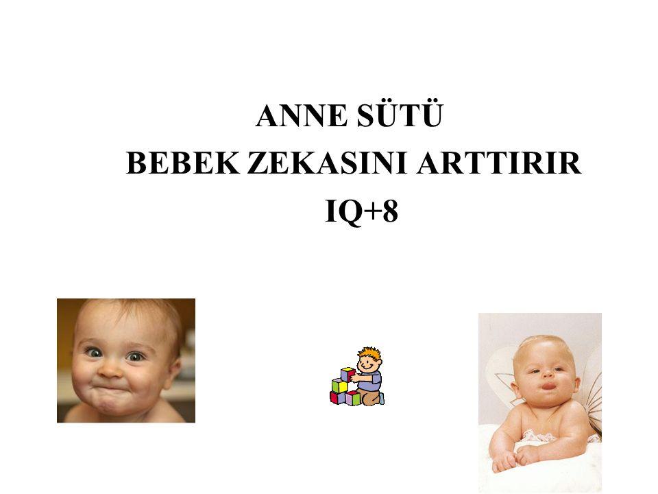 NEDEN ANNE SÜTÜ .