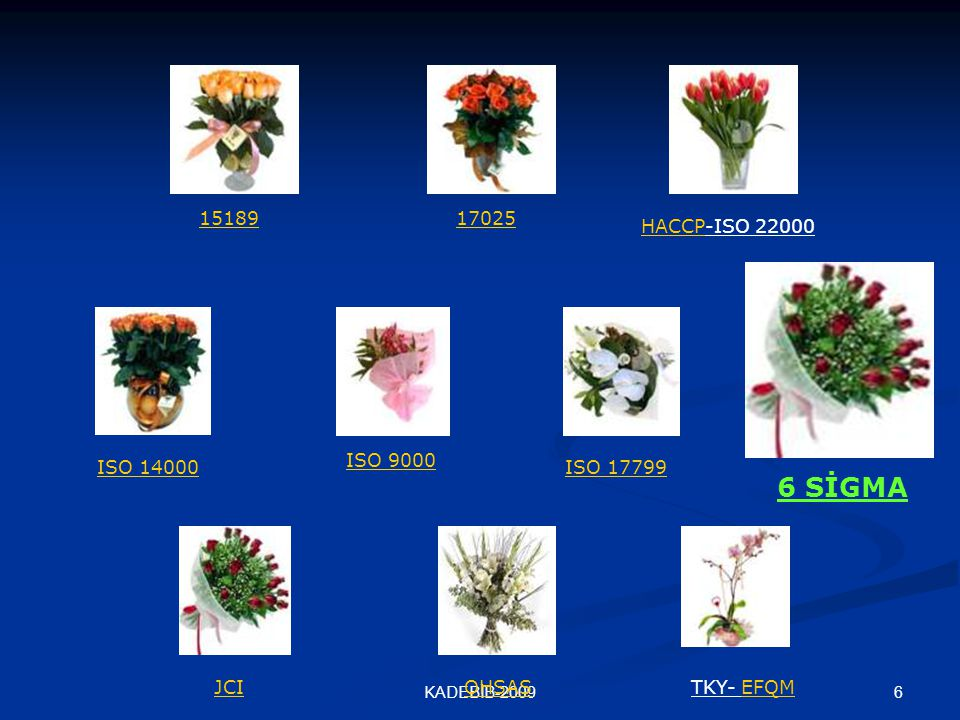 6KADEBİB-2009 1518917025 HACCPHACCP-ISO 22000 ISO 14000 ISO 9000 ISO 17799 JCIOHSASTKY- EFQMEFQM 6 SİGMA