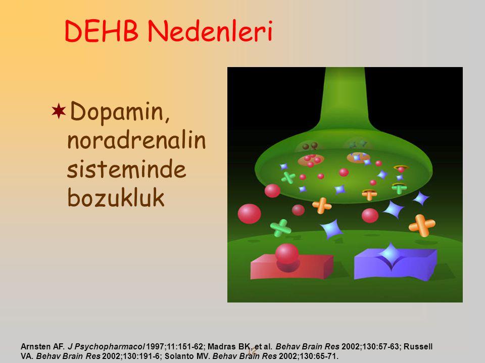 12  Dopamin, noradrenalin sisteminde bozukluk Arnsten AF. J Psychopharmacol 1997;11:151-62; Madras BK, et al. Behav Brain Res 2002;130:57-63; Russell