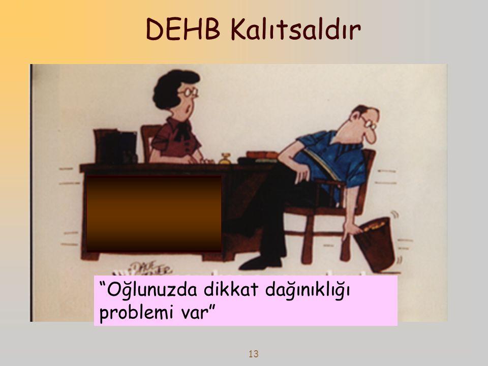 14 DEHB KALITSALDIR