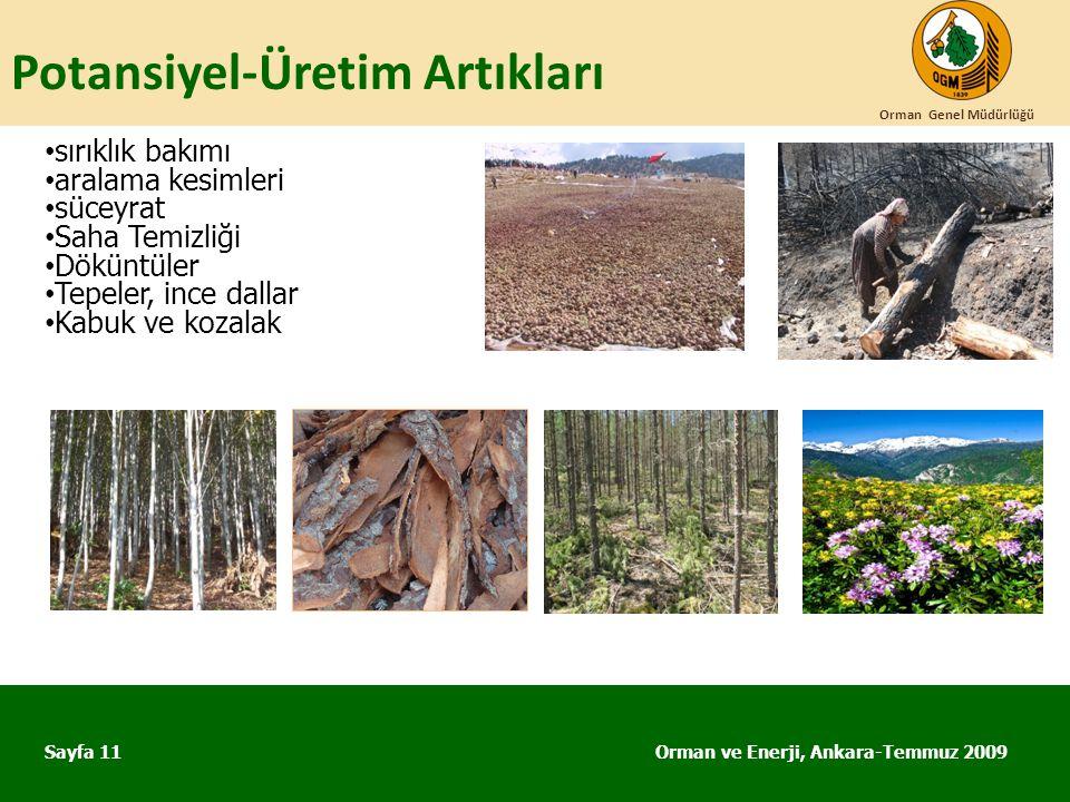 Potansiyel-Üretim Artıkları Orman ve Enerji, Ankara-Temmuz 2009 Orman Genel Müdürlüğü Sayfa 11 • sırıklık bakımı • aralama kesimleri • süceyrat • Saha