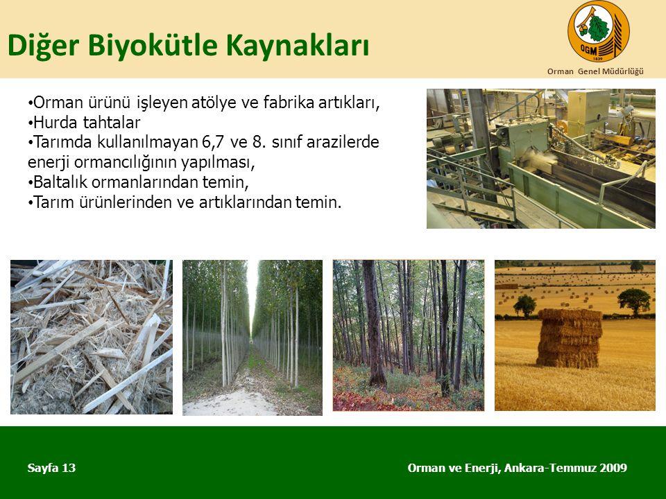 Diğer Biyokütle Kaynakları Orman ve Enerji, Ankara-Temmuz 2009 Orman Genel Müdürlüğü Sayfa 13 • Orman ürünü işleyen atölye ve fabrika artıkları, • Hur