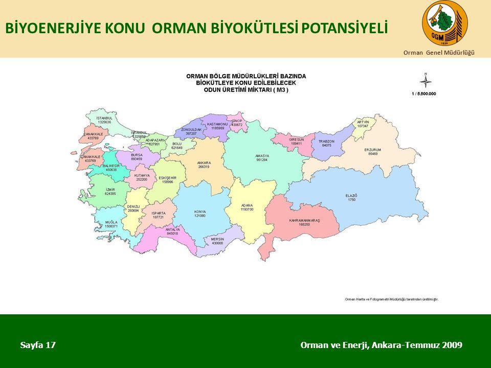 BİYOENERJİYE KONU ORMAN BİYOKÜTLESİ POTANSİYELİ Orman ve Enerji, Ankara-Temmuz 2009 Orman Genel Müdürlüğü Sayfa 17