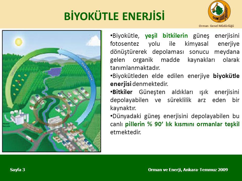 BİYOKÜTLE ENERJİSİ Orman ve Enerji, Ankara-Temmuz 2009 Orman Genel Müdürlüğü Sayfa 3 • Biyokütle, yeşil bitkilerin güneş enerjisini fotosentez yolu il