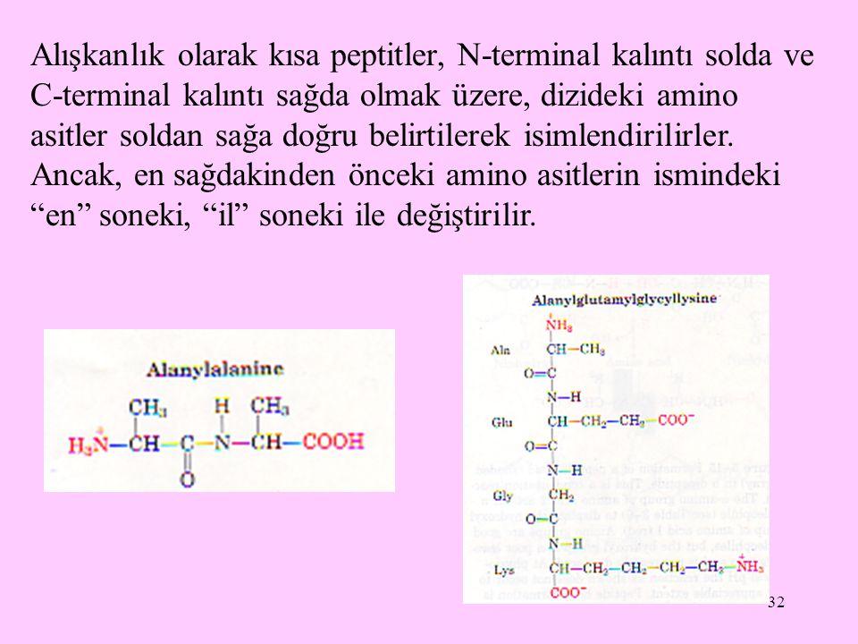 32 Alışkanlık olarak kısa peptitler, N-terminal kalıntı solda ve C-terminal kalıntı sağda olmak üzere, dizideki amino asitler soldan sağa doğru belirtilerek isimlendirilirler.