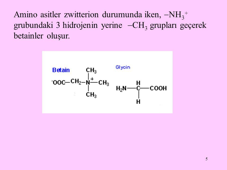 5 Amino asitler zwitterion durumunda iken,  NH 3  grubundaki 3 hidrojenin yerine  CH 3 grupları geçerek betainler oluşur.