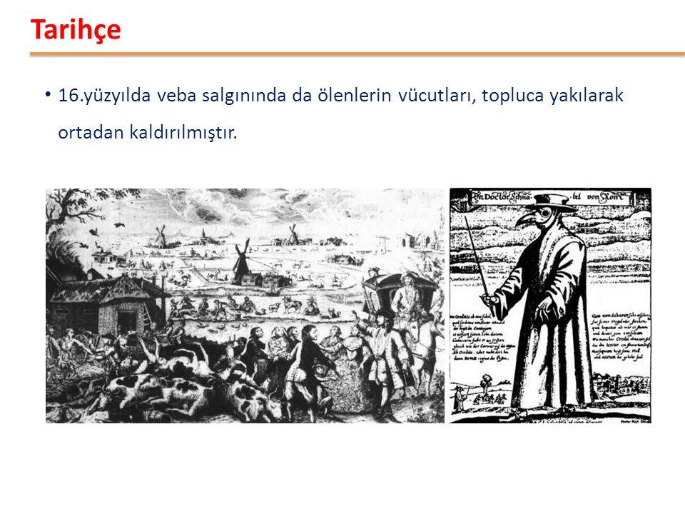5 • 16.yüzyılda veba salgınında da ölenlerin vücutları, topluca yakılarak ortadan kaldırılmıştır.