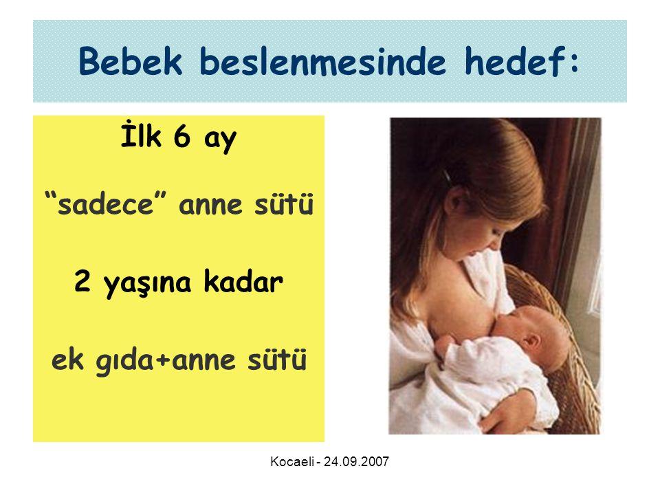 Kocaeli - 24.09.2007 Bebek beslenmesinde hedef: İlk 6 ay sadece anne sütü 2 yaşına kadar ek gıda+anne sütü