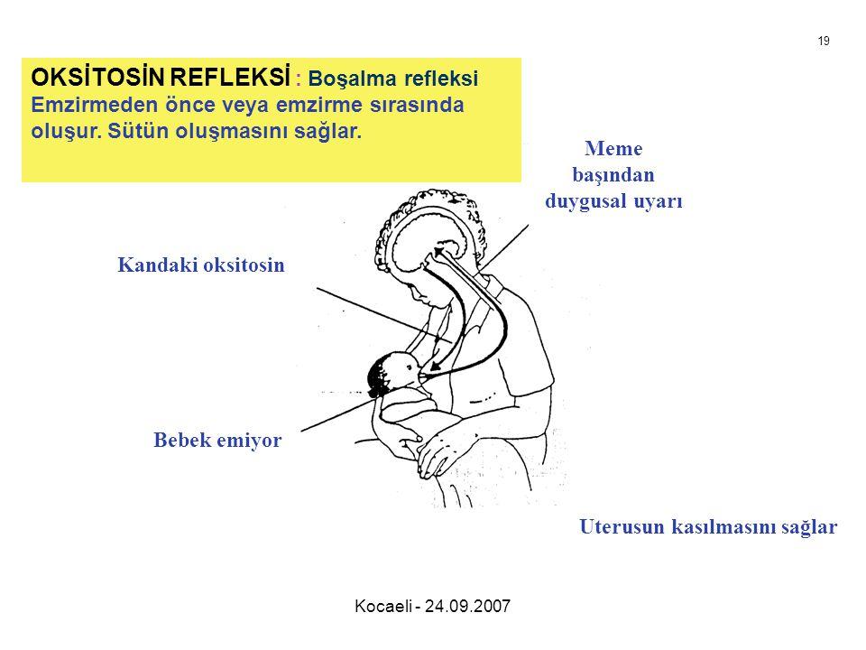Kocaeli - 24.09.2007 OKSİTOSİN REFLEKSİ : Boşalma refleksi Emzirmeden önce veya emzirme sırasında oluşur. Sütün oluşmasını sağlar. Meme başından duygu