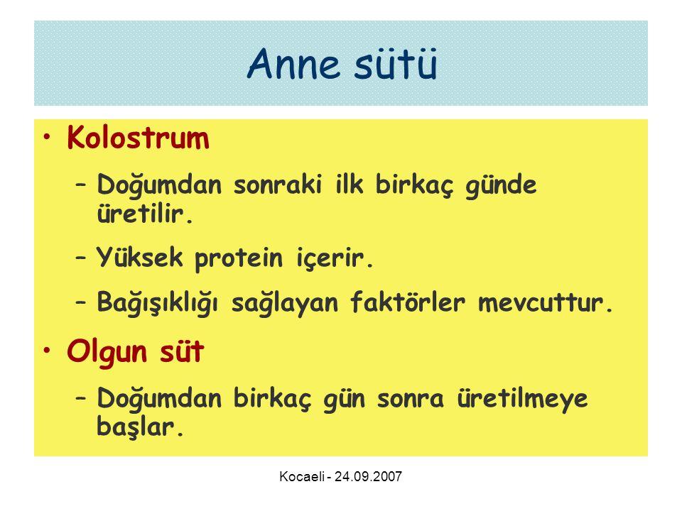 Kocaeli - 24.09.2007 Anne sütü •Kolostrum –Doğumdan sonraki ilk birkaç günde üretilir. –Yüksek protein içerir. –Bağışıklığı sağlayan faktörler mevcutt