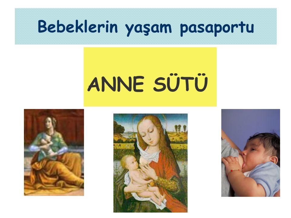 Kocaeli - 24.09.2007 Bebeklerin yaşam pasaportu ANNE SÜTÜ