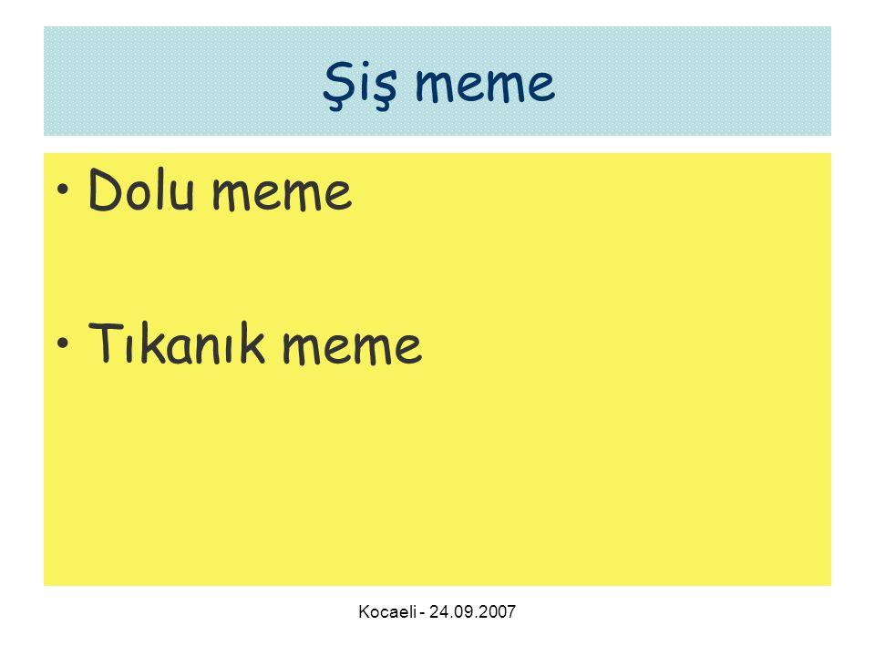 Kocaeli - 24.09.2007 Şiş meme •Dolu meme •Tıkanık meme