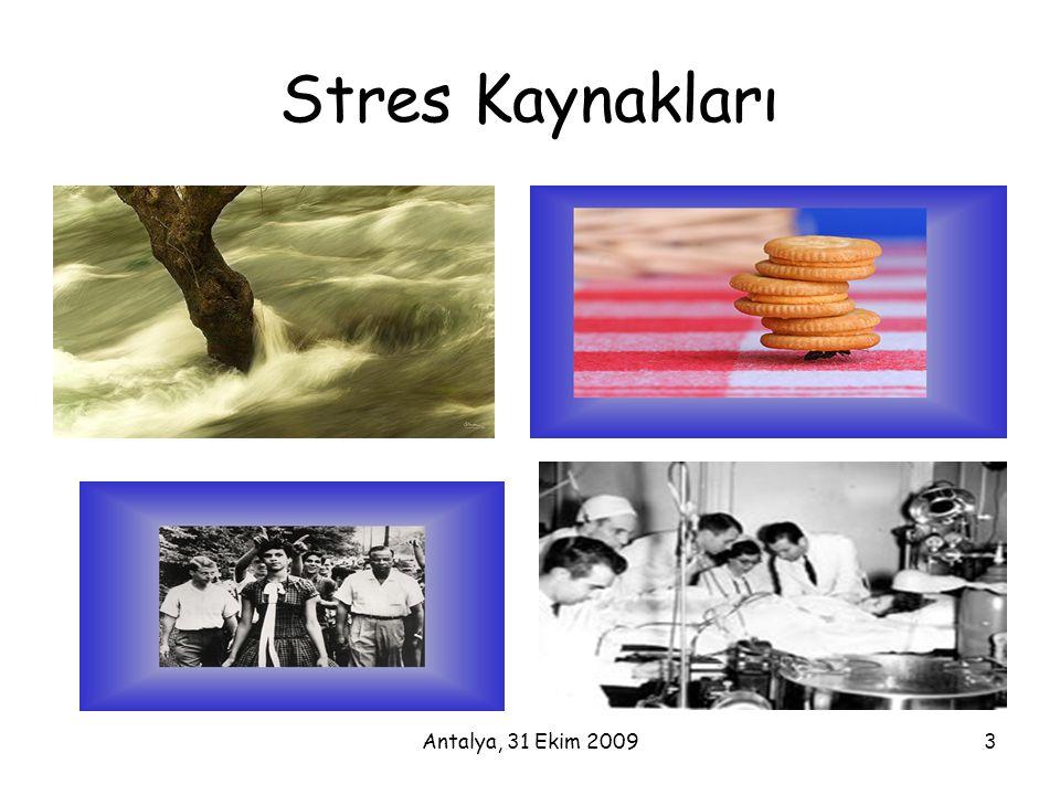 Antalya, 31 Ekim 20093 Stres Kaynakları