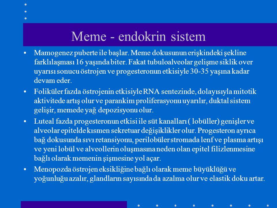 Meme - endokrin sistem •Mamogenez puberte ile başlar. Meme dokusunun erişkindeki şekline farklılaşması 16 yaşında biter. Fakat tubuloalveolar gelişme