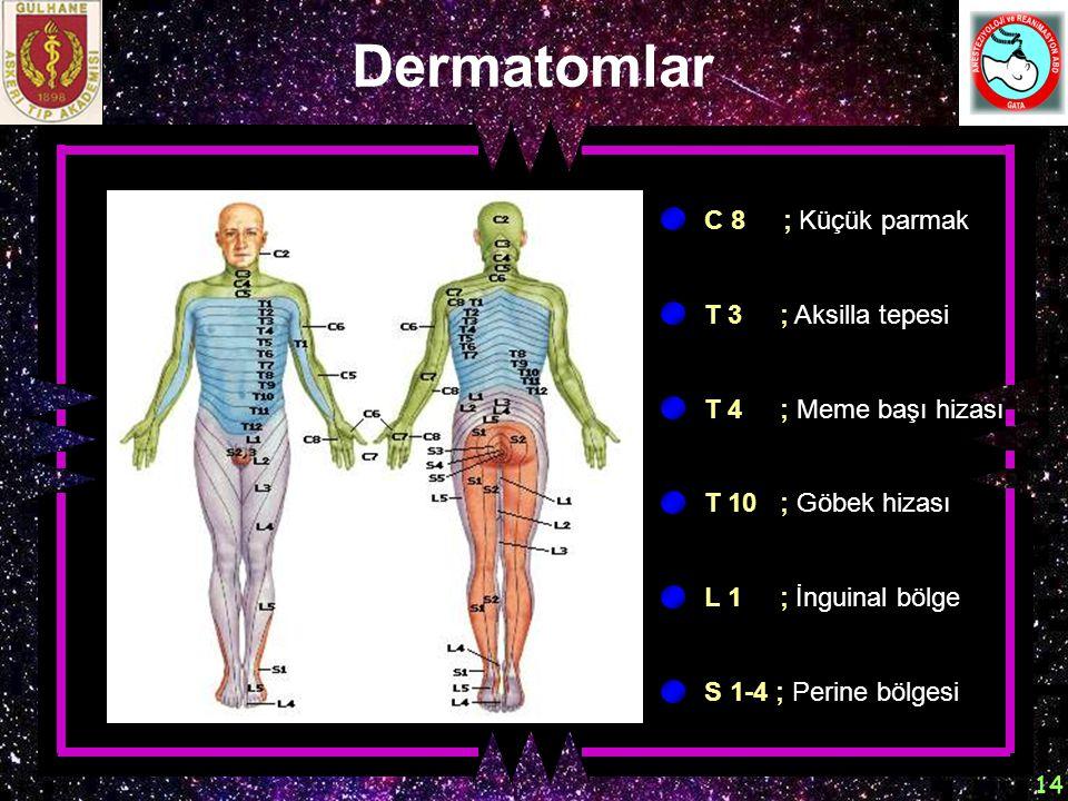 14 Dermatomlar T 4 ; Meme başı hizası C 8 ; Küçük parmak T 3 ; Aksilla tepesi T 10 ; Göbek hizası L 1 ; İnguinal bölge S 1-4 ; Perine bölgesi