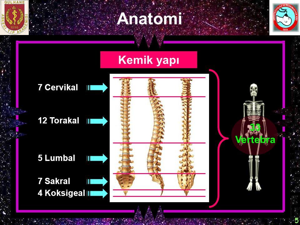 6 L 2 L 3 - 4 L 1- 5 Anatomi Kemik yapı İnterlaminal foramen Vertebral foramen Spinöz çıkıntı Transvers çıkıntı İntervertebral foramen Pedikül Lamina İntervertebral disk Vertebral korpus