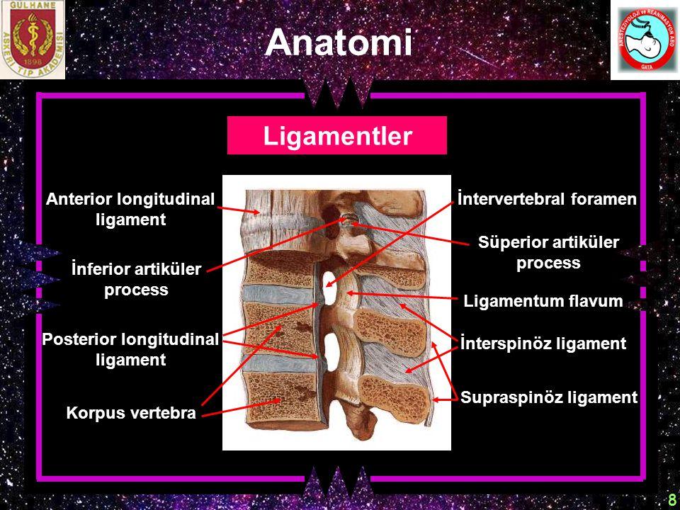 9 Anatomi Spinal kordun zarları Araknoid mater Dura mater Pia mater Spinal sinirler Epidural aralık ; İki dura yaprağı arasındadır.