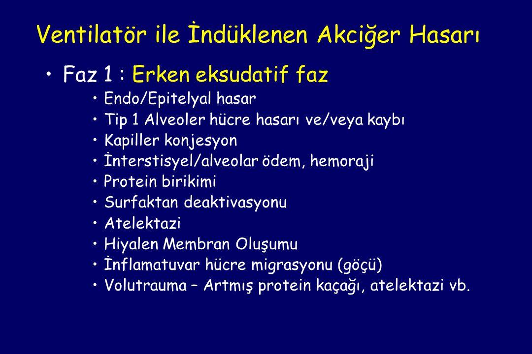 •Faz 1 : Erken eksudatif faz •Endo/Epitelyal hasar •Tip 1 Alveoler hücre hasarı ve/veya kaybı •Kapiller konjesyon •İnterstisyel/alveolar ödem, hemoraji •Protein birikimi •Surfaktan deaktivasyonu •Atelektazi •Hiyalen Membran Oluşumu •İnflamatuvar hücre migrasyonu (göçü) •Volutrauma – Artmış protein kaçağı, atelektazi vb.