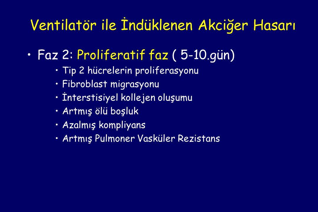 •Faz 2: Proliferatif faz ( 5-10.gün) •Tip 2 hücrelerin proliferasyonu •Fibroblast migrasyonu •İnterstisiyel kollejen oluşumu •Artmış ölü boşluk •Azalmış kompliyans •Artmış Pulmoner Vasküler Rezistans Ventilatör ile İndüklenen Akciğer Hasarı