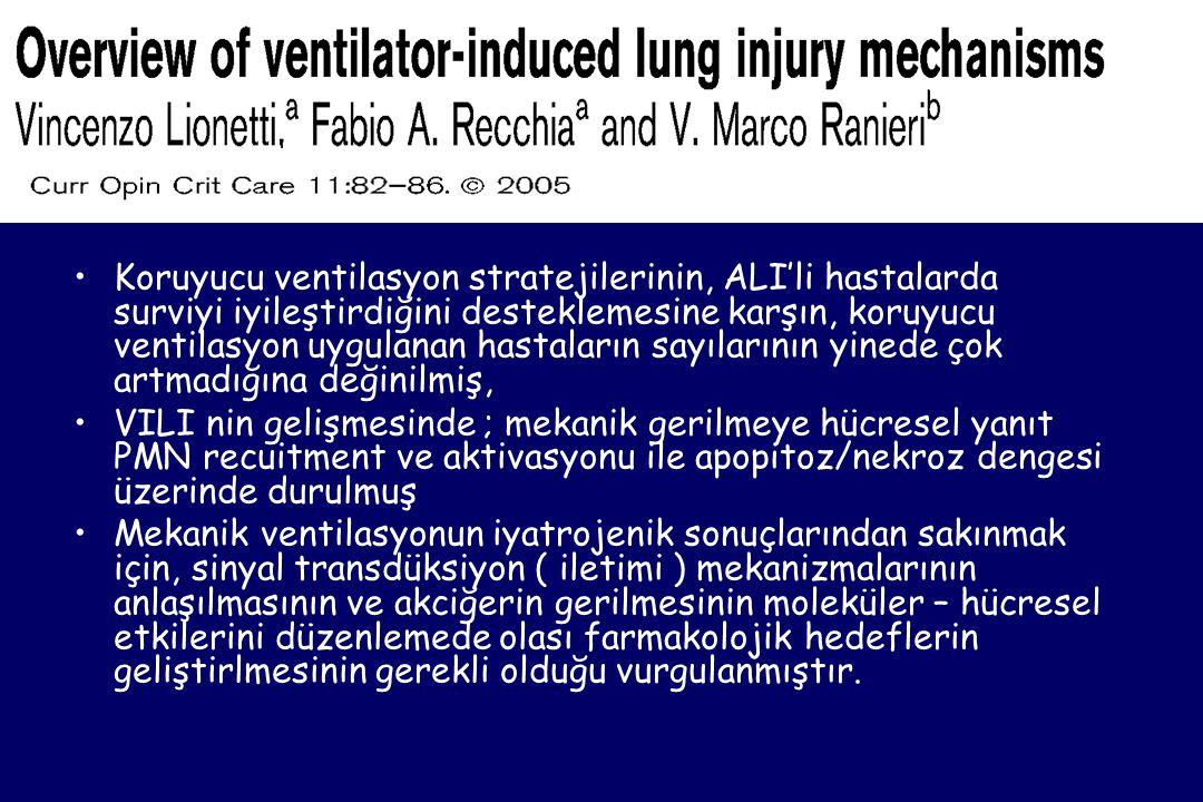•Koruyucu ventilasyon stratejilerinin, ALI'li hastalarda surviyi iyileştirdiğini desteklemesine karşın, koruyucu ventilasyon uygulanan hastaların sayılarının yinede çok artmadığına değinilmiş, •VILI nin gelişmesinde ; mekanik gerilmeye hücresel yanıt PMN recuitment ve aktivasyonu ile apopitoz/nekroz dengesi üzerinde durulmuş •Mekanik ventilasyonun iyatrojenik sonuçlarından sakınmak için, sinyal transdüksiyon ( iletimi ) mekanizmalarının anlaşılmasının ve akciğerin gerilmesinin moleküler – hücresel etkilerini düzenlemede olası farmakolojik hedeflerin geliştirlmesinin gerekli olduğu vurgulanmıştır.