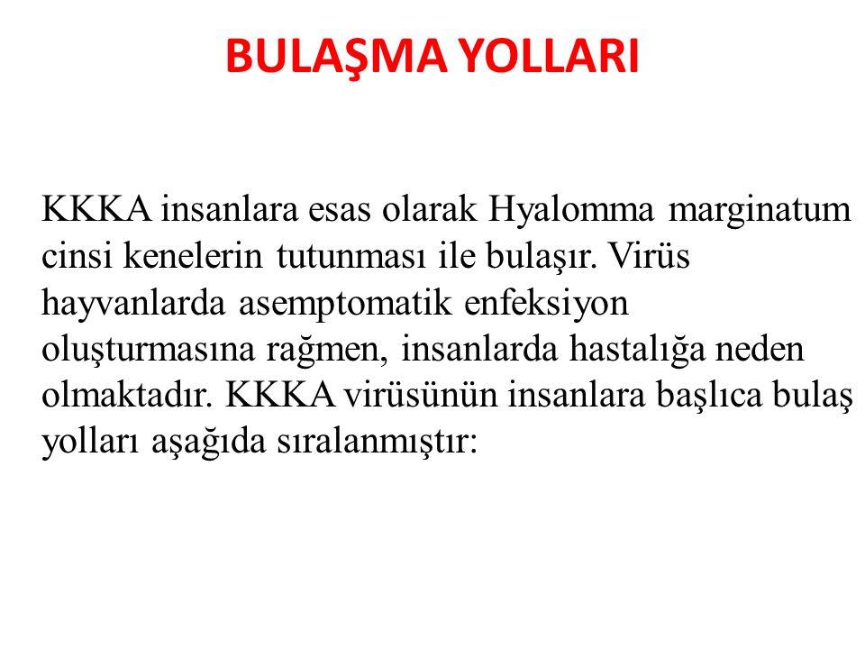 BULAŞMA YOLLARI KKKA insanlara esas olarak Hyalomma marginatum cinsi kenelerin tutunması ile bulaşır. Virüs hayvanlarda asemptomatik enfeksiyon oluştu