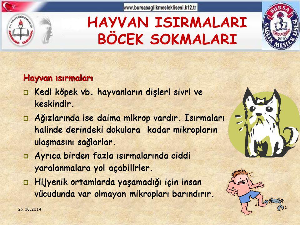 26.06.201427 HAYVAN ISIRMALARI BÖCEK SOKMALARI Hayvan ısırmaları  Kedi köpek vb. hayvanların dişleri sivri ve keskindir.  Ağızlarında ise daima mikr