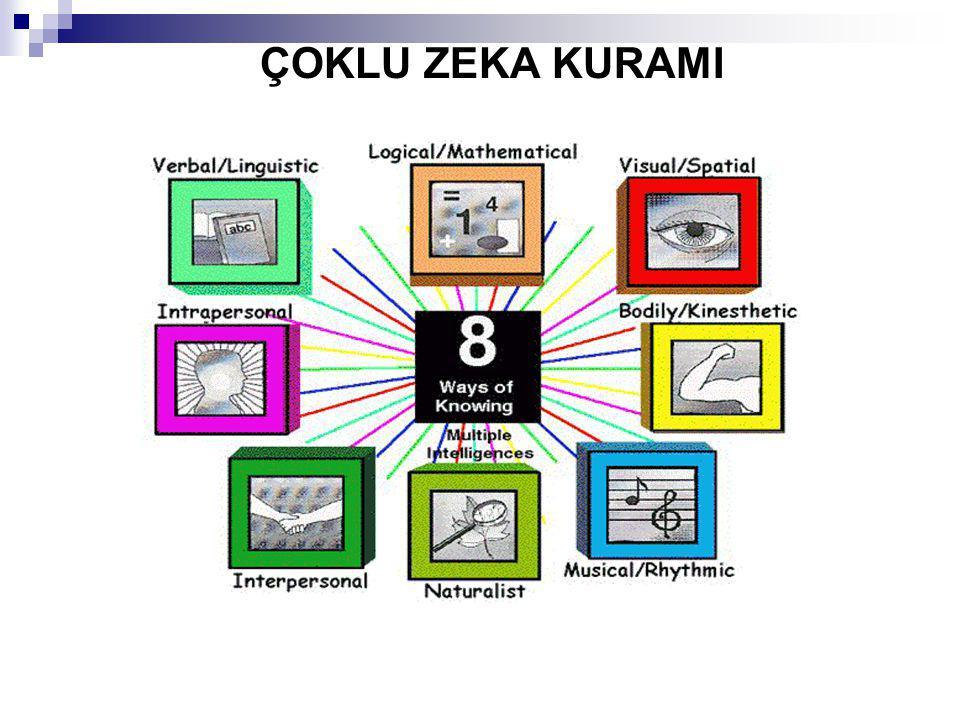 Öğretmenlik, Yönetim, İşletme, Danışmanlık, Psikologluk, Rehberlik uzmanı ve Politika gibi alanlarda başarıyla çalışabilirler.