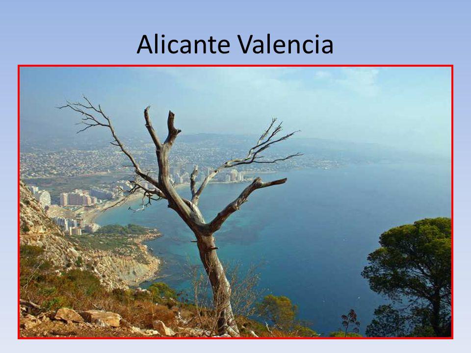 Alicante Valencia
