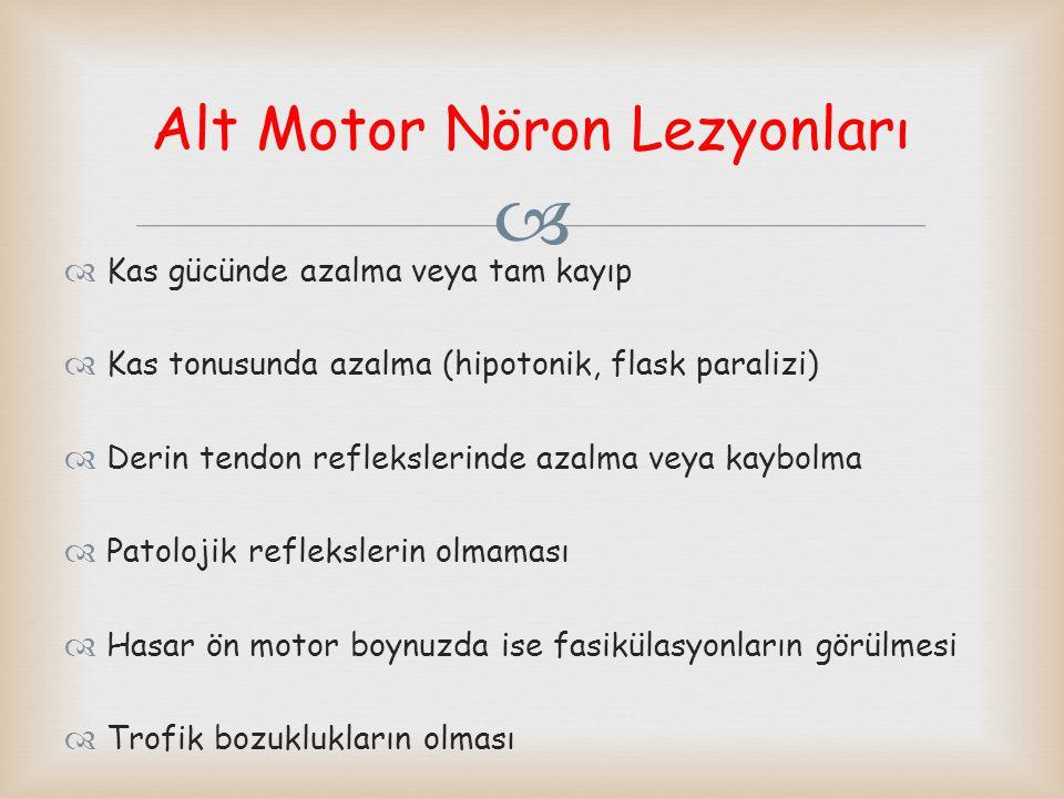   Alt motor nöron aynı taraf çizgili kas hareketini sağladığından klinik bulgular lezyon tarafında ortaya çıkar.
